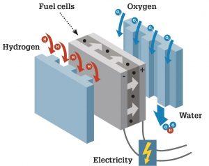 fuel cell motor