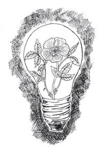 sketch of flowers in a light bulb