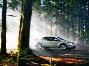 EV driving through the woods
