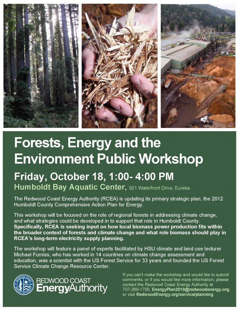 Forests Energy and the Environment Public Workshop flyer