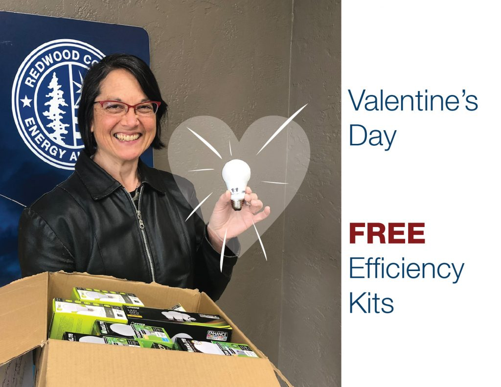 Valentines Day Energy Efficiency Kit invitation