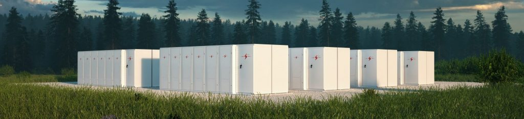 Battery energy storage system in nature