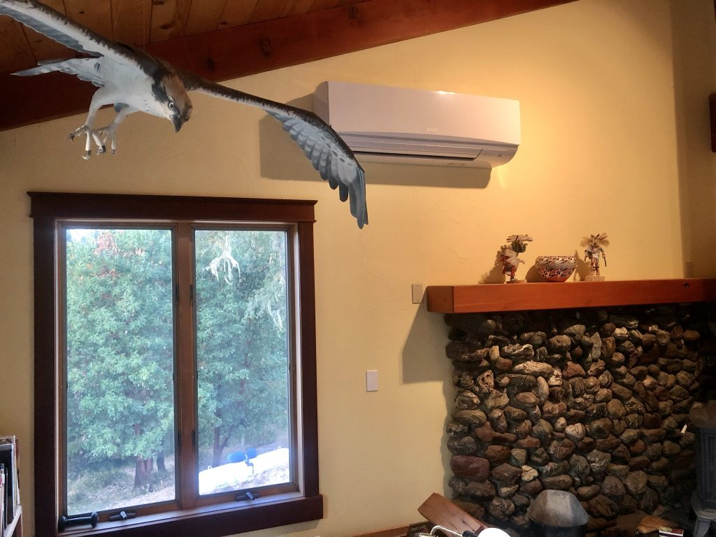 Livingroom with heat pump on wall and a model of an osprey hanging